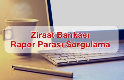 Ziraat Bankası Rapor Parası Sorgulama