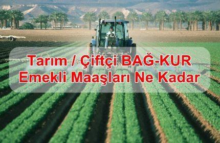 2019 Tarım / Çiftçi BAĞ-KUR Emekli Maaşları Ne Kadar?